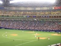 野球観戦.jpg