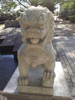 岐阜市内の公園にて.JPG